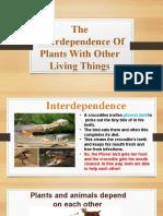 plants.pptx