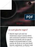 gauri_negre.ppt
