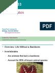 33- Invertebrates Text
