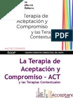 Introducción a las Terapias Contextuales (2)