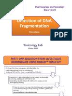 DNA fragmentation procedure 2012