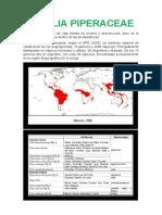 FAMILIA PIPERACEAE, descripciones generales, usos.