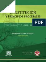 CONSTITUCION Y PRINCIPIOS PROCESALES Completo julio 13.pdf