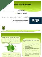 Presentacion Evaluacion del entorno