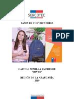 Bases-Semilla_Joven-Araucanía-2019_VF.docx