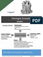 UNIDAD 2 Patologías forestales.pdf