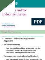 45 Endocrine Text