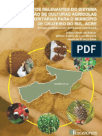 Aspectos Relevantes do Sistema de Produção de Culturas Prioritárias para o Município de Cruzeiro do Sul, Acre