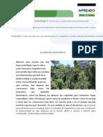 FICHA AUTOAPRENDIZAJE CICLO VI CIENCIA Y TECNOLOGIA SEMANA 2 (1).docx