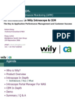Wily Introscope APM