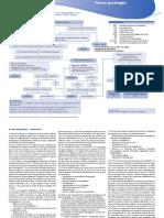 fievre_prolongee_VH_2016.pdf