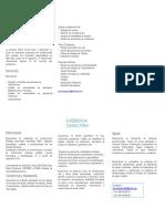 Brochure Consultoría Civil-converted
