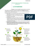 FICHA DE APOYO DEL ÁREA DE CIENCIA Y TECNOLOGIA SEMANA 27.pdf