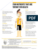 EggNutrients-for-Health.pdf