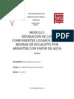 SEPARACION DE COMPONENTES DE LA RECINA DE HEUCALIPTO