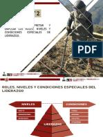 TAREA 2 ROLES,NIVELES Y CONDICIONES ESPECIALES DEL LIDERAZGO