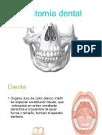 anatomadental-161211224409