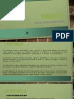 HOJA DE RUTA - UNIDAD VI