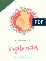 II Vigilancia Prenatal
