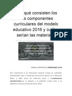 En qué consisten los tres componentes curriculares del modelo educativo 2016 y cuáles serían las materias