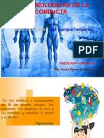 Bases Biológicas.pptx