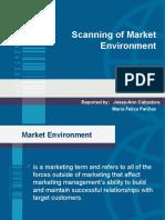 market environment(3)