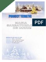 3_proiect_tematic_iarna