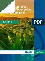 Manual de identificação de pragas de milho atualizado