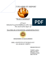 PROJECT FEASIBILITY REPORT