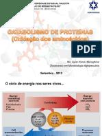 catabolismo-de-proteinas.pdf