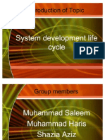 21894887-system-development-life-cycle-Presentation