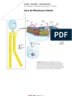 Biologia - Volume 01 - Das Células 01 Estrutura da Membrana Celular