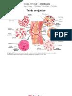 Biologia - Volume 01 - Das Células 13 - Tecido conjuntivo