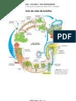 Biologia - Volume 02 - Dos Organismos 06 Ciclo de vida da briófita