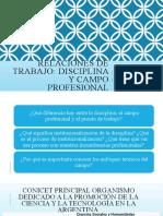 RRTT disciplina y profesión_Octubre 2020