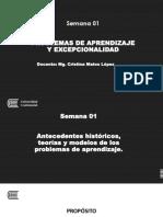 Semana 1 (1).pdf