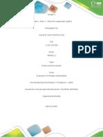 Unidad 1 Paso 1 -  organizador gráfico.pdf