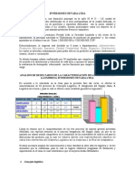 Analisis - Inversiones Nevada Ltda.