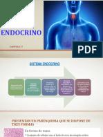 SISTEMA_ENDOCRINO (5).pptx