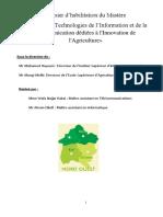 Mastère_co-construit_NTICDIA_accepté_CNS