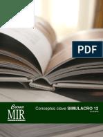 CONCEPTOS CLAVE SIM12.pdf