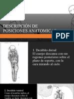DESCRIPCIÓN DE POSICIONES ANATOMICAS identificacion humana 2