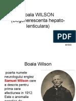 Boala Wilson