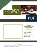 DETERMINACIÓN DE LA COMPETENCIA.pptx