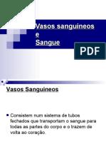 Vasos_sanguineos