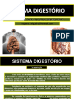 08 Sistema Digestório.pdf
