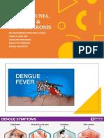 DENGUE, CHIKUNGUNIA, LEPTOSPIROSIS  MALARIA