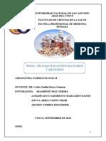 Expo Farmacologia-Tranquilizantes mayores y menores-FINAL.docx
