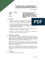 Informe_de_Actividades_DRE-HUANUCO (1)