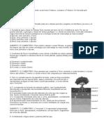 ATIVIDADES 04 - QUESTOES DE GEOGRAFIA 6 ANO PROF ANTONIO JUNIOR